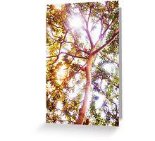 Grow and Glow Greeting Card