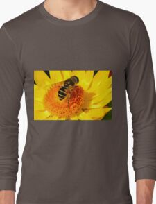 The Big Bee on the Yellow Flower Long Sleeve T-Shirt