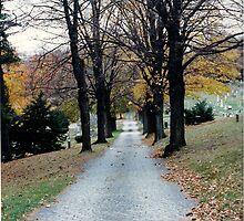 Fall Road by Stormoak Lonewind