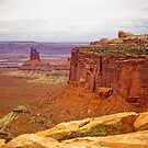 CANYONLANDS, NEEDLES OVERLOOK by hugo
