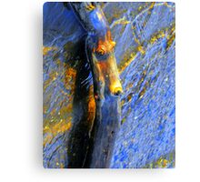 ? intense Canvas Print