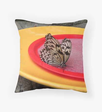 Butterfly Eating Throw Pillow