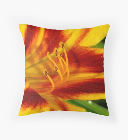 More Day Lilies Throw Pillow