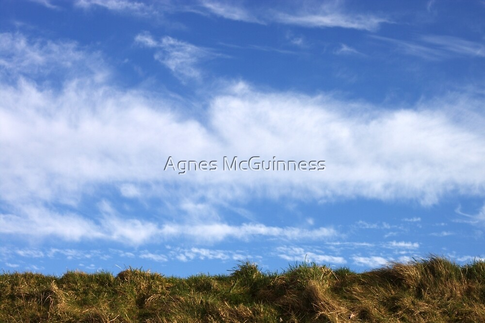 Above, the sky by Agnes McGuinness