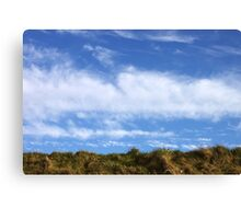 Above, the sky Canvas Print