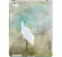 Fanciful and Free iPad Case/Skin