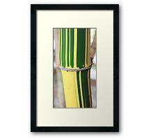 Bamboo Stem Framed Print