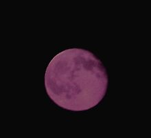 My Purple Moon by Linda Miller Gesualdo