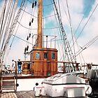 Tall Ship Elisa Pilot House by Charles Buchanan