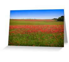 Poppy Field - Ukraine Greeting Card