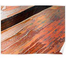 Peeling wood  Poster