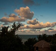 Thatched house on the beach. by Karel Kuran