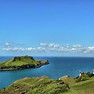  Worms head Rhosilli bay Gower Wales by wizard327