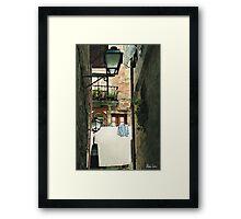 HC0201 Framed Print
