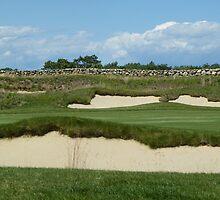 Golf anyone? by terralee