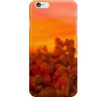 Sunset Over the Desert iPhone Case/Skin