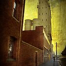 The mill by Adrian Donoghue