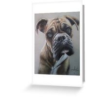 Boxer close up in colored pencil Greeting Card