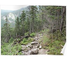The Kinsman/Canon Mt Trail!  Poster
