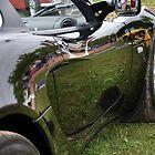 Black Lotus Elise by Craig Blanchard