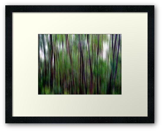 Bushwalking by Kitsmumma