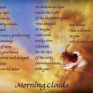 Morning Clouds by TeriLee