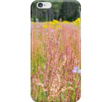 Colorful Field iPhone Case/Skin