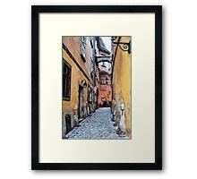 HC0195 Framed Print