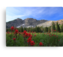 Devil's Castle Canvas Print