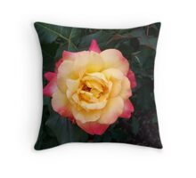 A Rose is a Rose 11 Throw Pillow