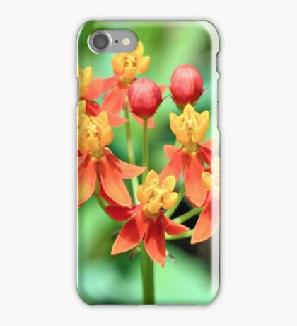 Butterfly Weed iPhone Case/Skin