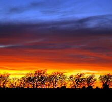 Texas Sunset by MBallard