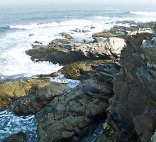 Conanicut Island Series - 2009.07.28 by Jack McCabe