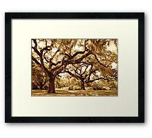 The Mighty Oaks Framed Print