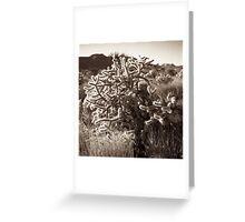 mojave desert cactus Greeting Card