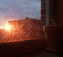 Rain in Brooklyn by Katerina Tassiopoulos