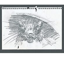 Sketch of the devil that bite my sketch pad Photographic Print