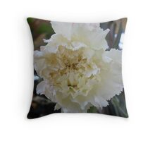 White Carnation With a Hint of Pink Throw Pillow