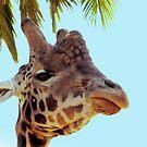 Giraffe VIII by Tom Newman
