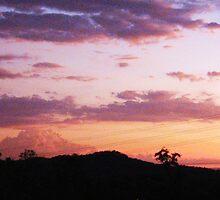 Gladstone Sunset by babynomad