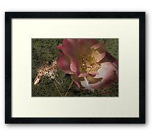 Rust 'n Roses ~ #11 Framed Print