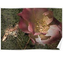 Rust 'n Roses ~ #11 Poster