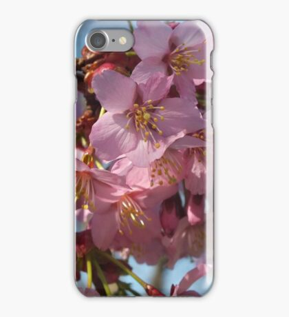 Spring Has Sprung,  Spring Blossom iPhone Case/Skin