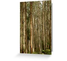 Black Spur Greeting Card
