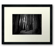 TOOTHPICKS FOR GIANTS Framed Print