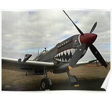 Flying Grey Nurse, Spitfire Poster