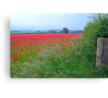 Field of Rememberance Canvas Print