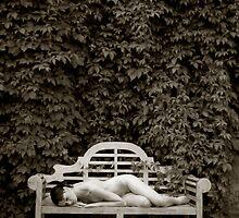The Resting Bench by Maxoperandi