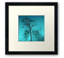 Feeling Blue.. Framed Print