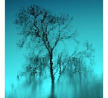 Feeling Blue.. Photographic Print